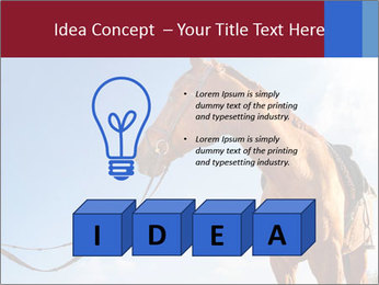 Saddled Horse PowerPoint Template - Slide 80