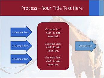 Saddled Horse PowerPoint Template - Slide 85