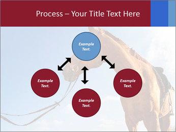Saddled Horse PowerPoint Template - Slide 91