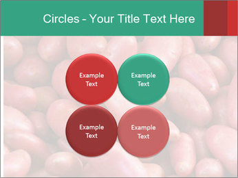 Red potatoes PowerPoint Template - Slide 38