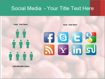 Red potatoes PowerPoint Template - Slide 5