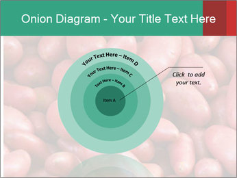 Red potatoes PowerPoint Template - Slide 61