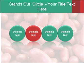 Red potatoes PowerPoint Template - Slide 76