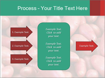 Red potatoes PowerPoint Template - Slide 85