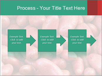 Red potatoes PowerPoint Template - Slide 88
