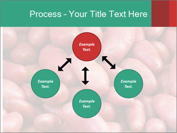 Red potatoes PowerPoint Template - Slide 91