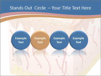 Skin PowerPoint Templates - Slide 76