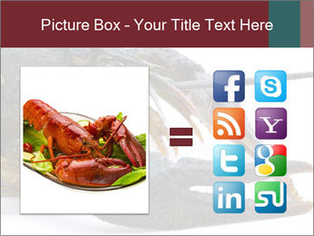 Crayfish PowerPoint Templates - Slide 21