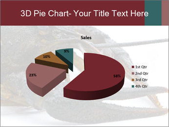 Crayfish PowerPoint Templates - Slide 35