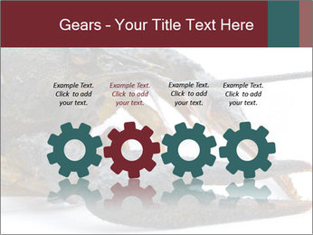 Crayfish PowerPoint Templates - Slide 48