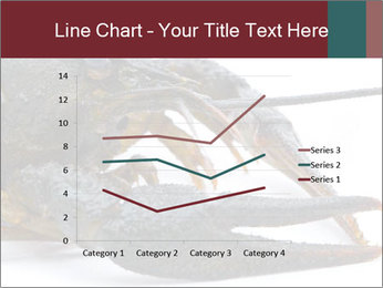 Crayfish PowerPoint Templates - Slide 54