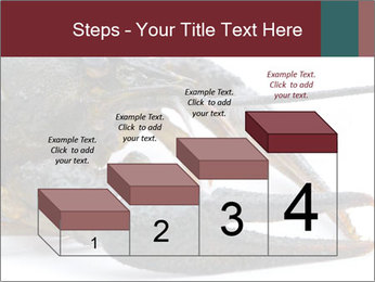 Crayfish PowerPoint Templates - Slide 64
