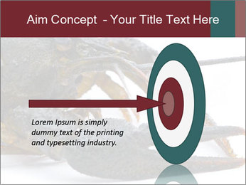 Crayfish PowerPoint Templates - Slide 83