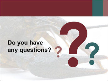 Crayfish PowerPoint Templates - Slide 96