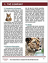 0000088624 Word Templates - Page 3