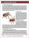 0000088624 Word Templates - Page 8