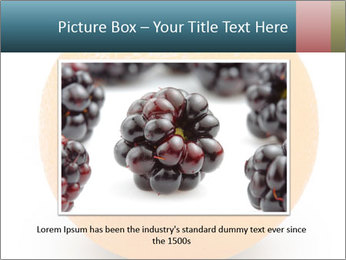 Orange PowerPoint Template - Slide 16