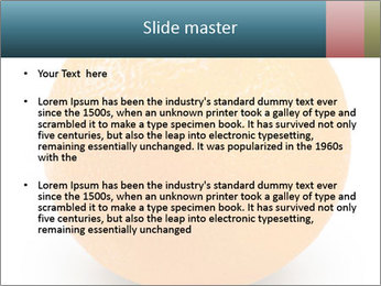 Orange PowerPoint Template - Slide 2