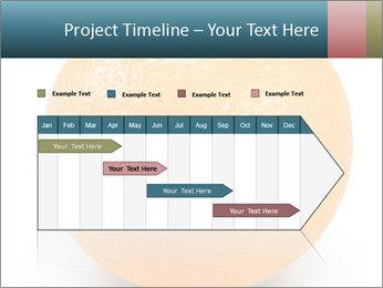 Orange PowerPoint Template - Slide 25