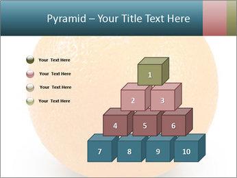 Orange PowerPoint Template - Slide 31