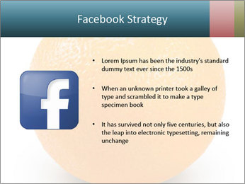 Orange PowerPoint Template - Slide 6