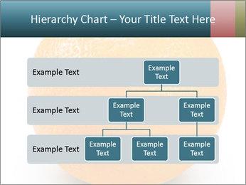 Orange PowerPoint Template - Slide 67