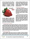 0000088651 Word Template - Page 4