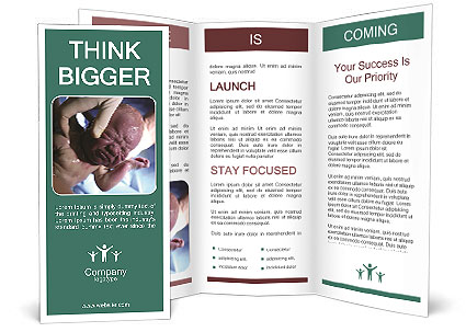 0000088658 Brochure Templates