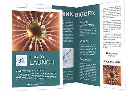 0000088662 Brochure Template