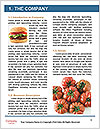 0000088664 Word Template - Page 3