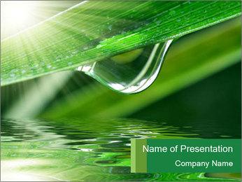 Fresh grass PowerPoint Template - Slide 1