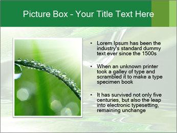Fresh grass PowerPoint Template - Slide 13