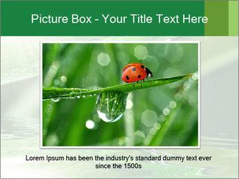 Fresh grass PowerPoint Template - Slide 15