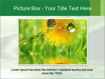 Fresh grass PowerPoint Template - Slide 16