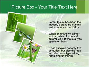 Fresh grass PowerPoint Template - Slide 17