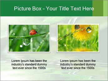 Fresh grass PowerPoint Template - Slide 18