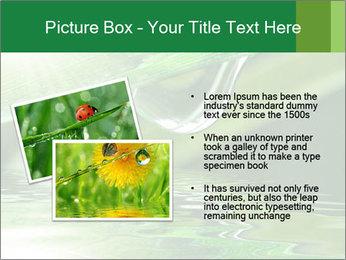 Fresh grass PowerPoint Template - Slide 20