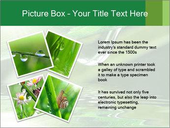 Fresh grass PowerPoint Template - Slide 23