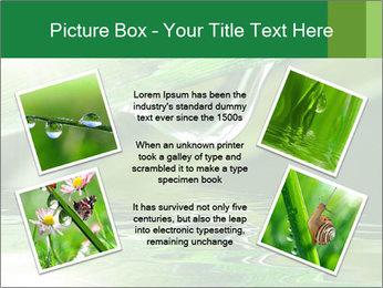 Fresh grass PowerPoint Template - Slide 24