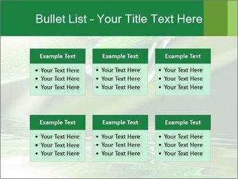 Fresh grass PowerPoint Template - Slide 56