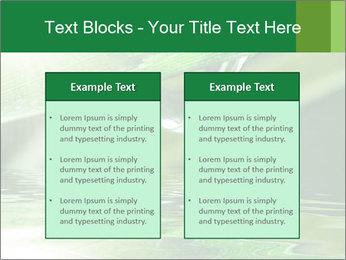 Fresh grass PowerPoint Template - Slide 57