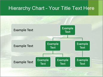 Fresh grass PowerPoint Template - Slide 67
