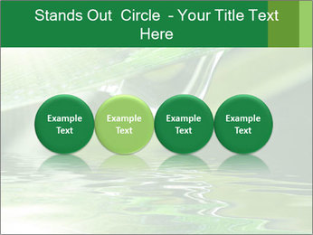 Fresh grass PowerPoint Template - Slide 76