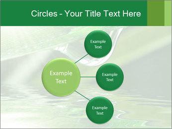 Fresh grass PowerPoint Template - Slide 79