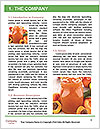 0000088675 Word Templates - Page 3