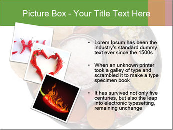Traditional vegetarian indian PowerPoint Template - Slide 17