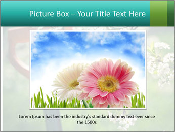 Blooming cherry branch and shovel PowerPoint Templates - Slide 16