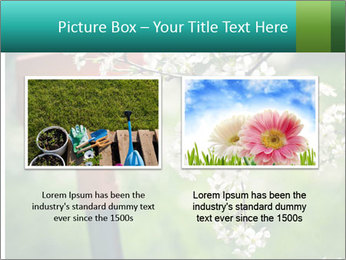 Blooming cherry branch and shovel PowerPoint Templates - Slide 18