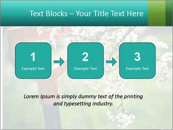 Blooming cherry branch and shovel PowerPoint Templates - Slide 71