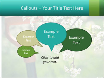 Blooming cherry branch and shovel PowerPoint Templates - Slide 73